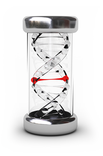 dna-hourglass-about